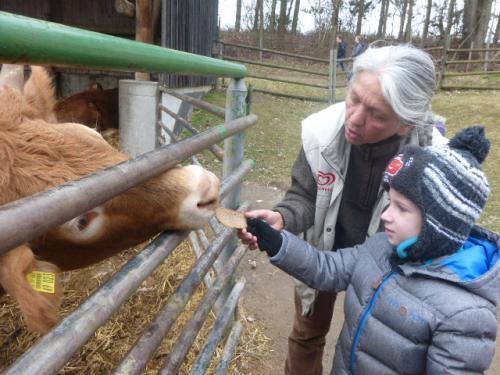 2019-02_Thema Bauernhof in der Froschgruppe_013