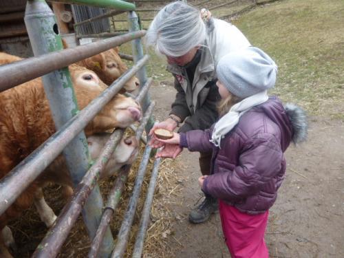 2019-02_Thema Bauernhof in der Froschgruppe_019