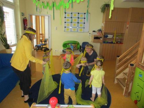 Farben - Feste der Käfergruppe (Mai 2017)